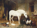 Stable Companions