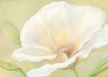 White flower I