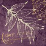 Lavender Pistache
