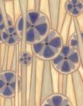 Lavender Reeds I