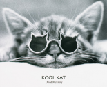 Kool Kat
