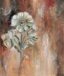 Papaveraceae I