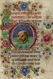 Initial D: A Skull in a Rocky Field