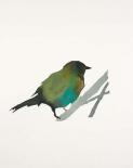 Water Bird 3