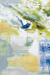 Blue Wrens I