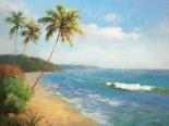 Palma De La Playa