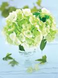 Petit bouquet romantique - fleur dhy.