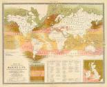 Marine life, 1854