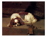 King Charles Spaniel Resting