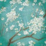 White Cherry Blossoms I