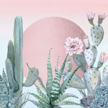 Desert Sunset Cactuses and Succulents