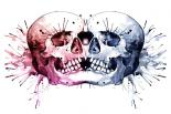 Conjoined Skull