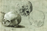 Study of Three Skulls