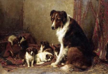 A Collie With Her Puppies