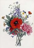 Collection Des Fleurs Et Des Fruits