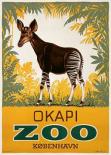 København Zoo/Okapi