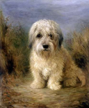 A Dandie Dinmont