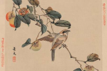 Bird perched on a branch from a fruit persimmon tree., 1892