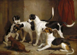 The Puckeridge Foxhounds