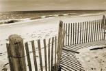Beach Walk 1