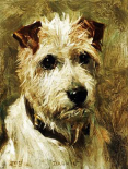 Portrait of a Terrier: Darkie