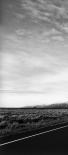 Grand Teton Empty I