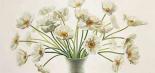 Bouquet di anemoni