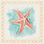 Coastal Mist Starfish
