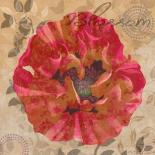 Poppy Swirl VI