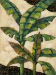 Bronze Palm 1