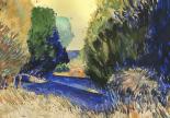 Albion Cedars