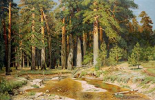 The Mast-Tree Grove, Study