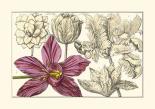 Embellished Arena Botanical IV
