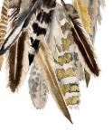 Custom Vintage Feathers I