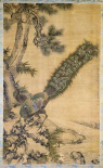 Bamboo, Pine and Peacocks