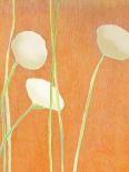 Cream Flowers on Orange