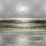 Silver Seascape I