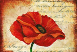 Poppy Script