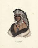 A Pawnee Brave