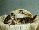 Kittens Up To Mischief