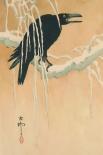 Blackbird in snow, 1885