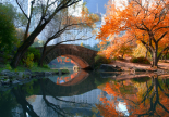 Gapstow Bridge, Fall