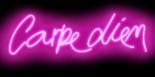 Neon Carpe Diem PB