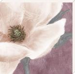 Grandiflora VII