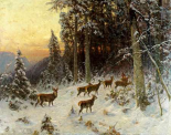 Deer In Winter Wooded Landscape