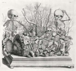 Diorama of fetal skeletons arranged with various internal organs