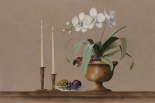 White Orchid Still Life