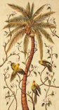 Tropical Panel I