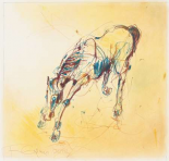 Bucking Horse Study