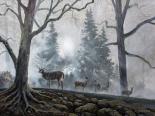 Deer Path I